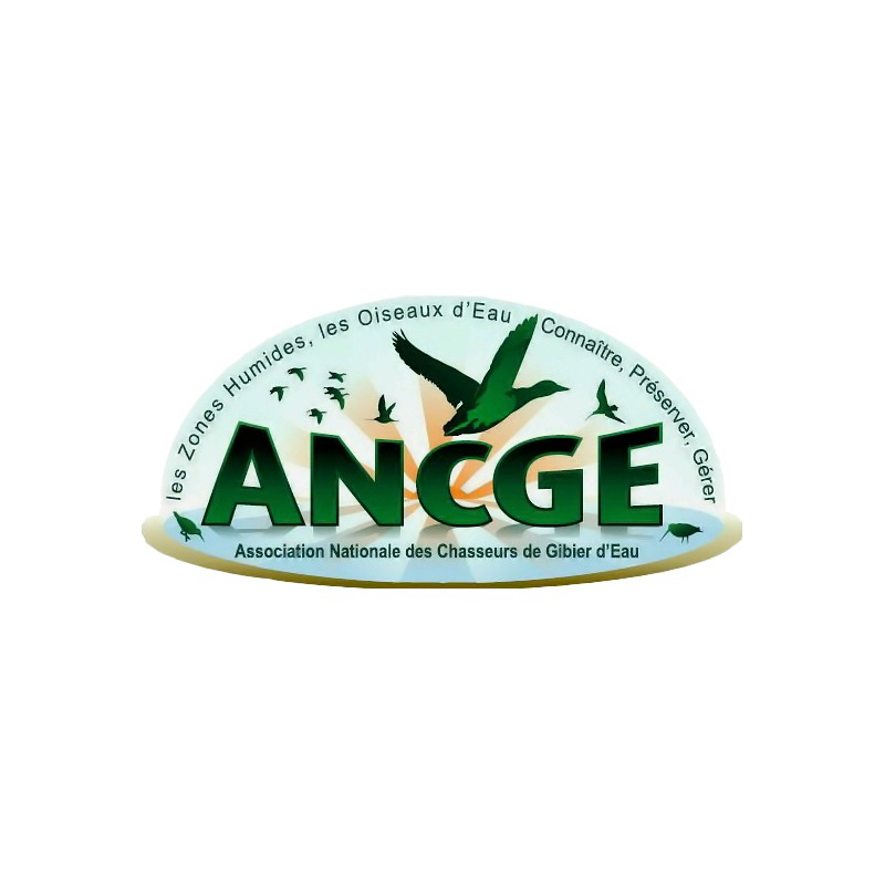 Ancge bague 2015